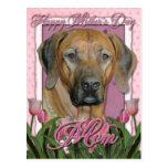 Día de madres - tulipanes rosados - Rhodesian Postal