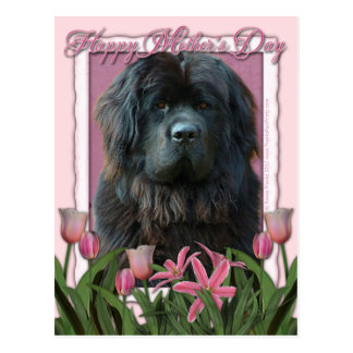 Día de madres - tulipanes rosados - Terranova Tarjetas Postales