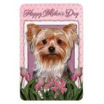 Día de madres - tulipanes rosados - Yorkshire Terr Imán Rectangular