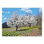 Día de primavera en Dillsboro Tarjeta