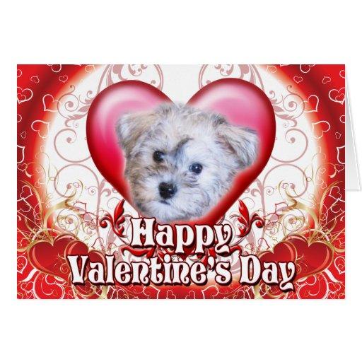 Día de San Valentín feliz Schnoodle Felicitacion