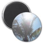Día de verano de la palmera imán de frigorifico