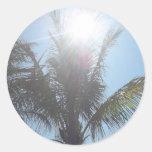 Día de verano de la palmera pegatina redonda