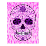 Día del cráneo muerto del azúcar - rosa y púrpura postal