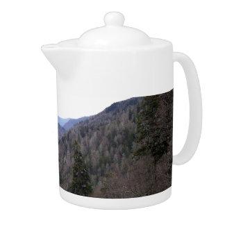 Día del frío de Great Smoky Mountains