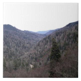 Día del frío de Great Smoky Mountains Azulejo Cuadrado Grande