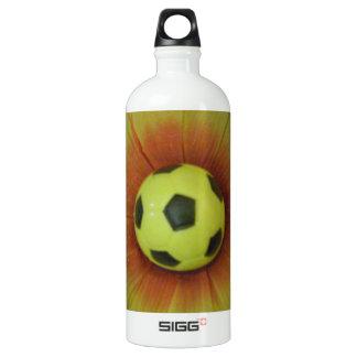 Día del fútbol de la sol