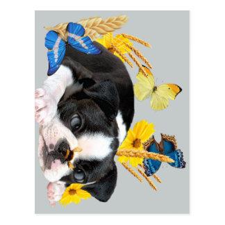 Día del juego de Boston Terrier Tarjetas Postales