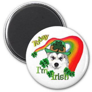 Día del St Patricks del husky siberiano Imán Redondo 5 Cm