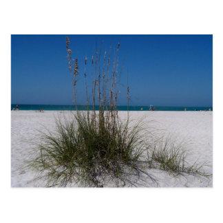 Día en la playa postales