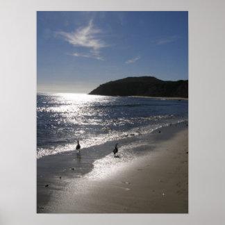 Día en la playa póster