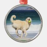 Día feliz de Labradoodle en la playa Ornamento De Navidad