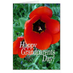 Día feliz de los abuelos - flores de la amapola tarjetón