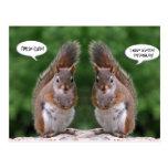 Día feliz de los gemelos, humor de la ardilla roja tarjeta postal