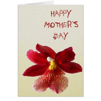 Día feliz del ` s de la madre tarjetas