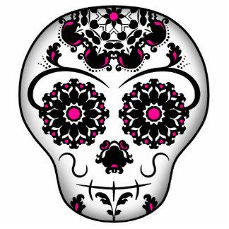 Día femenino del cráneo muerto del azúcar imán fotoescultura
