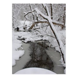 Día hivernal tarjetas postales