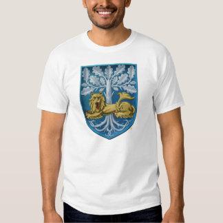 Día internacional de la heráldica camisas