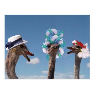 Día loco del gorra en las razas postales