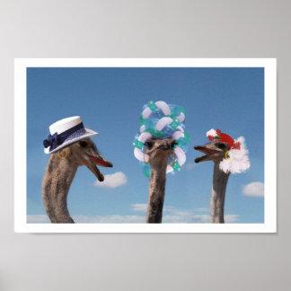 Día loco del gorra en las razas póster