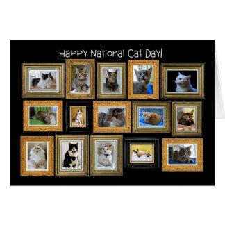 Día nacional del gato, tarjeta de la galería del r