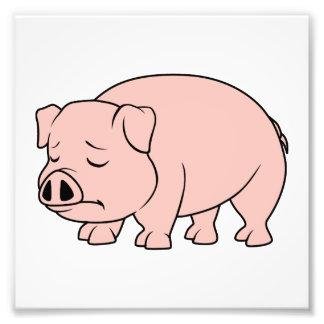 Día nacional gritador del cerdo del cochinillo fotografías