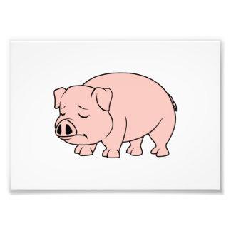 Día nacional gritador del cerdo del cochinillo fotografia