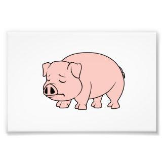 Día nacional gritador del cerdo del cochinillo cojinete