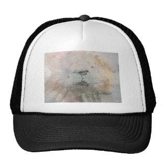 Día pacífico gorras