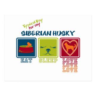 Día típico para mi husky siberiano postal