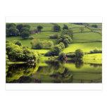 Día verde tarjetas postales