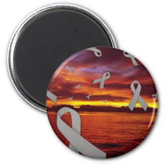 Diabetes Awareness Ribbons Float Through Sunset Refrigerator Magnet