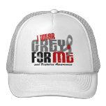 Diabetes I WEAR GREY FOR ME 6.2 Mesh Hat