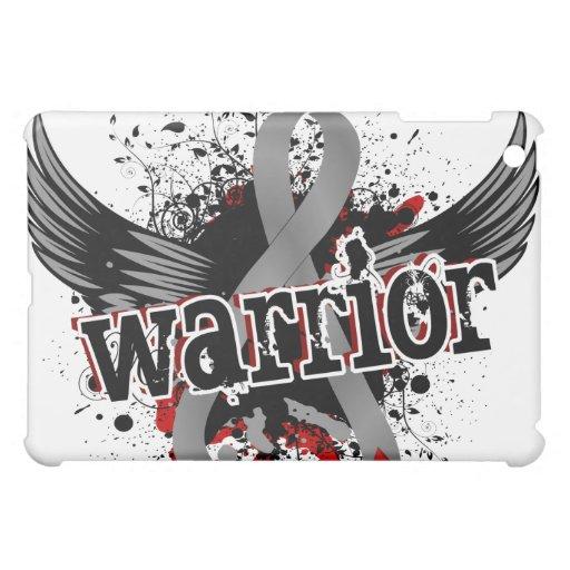 Diabetes juvenil del guerrero 16