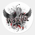 Diabetes juvenil del guerrero 16 pegatina