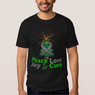 Diabetes Peace Love Joy Cure Shirt