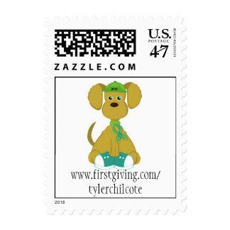 diabetesdog-bmc, www.firstgiving.com/tylerchilcote postage