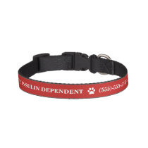 Diabetic Medical Alert Pet Collar