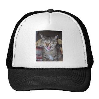 Diablo Kitty Trucker Hat