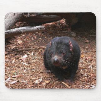 Diablo tasmano adorable Mousepad