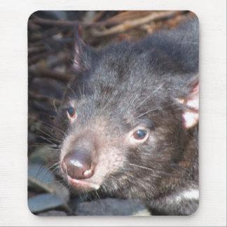 Diablo tasmano Mousepad