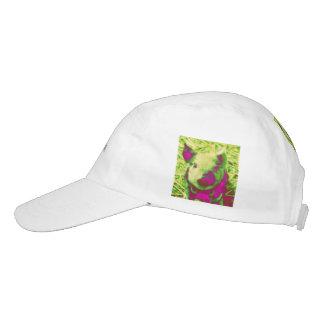 diabolic piglet headsweats hat