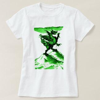 DIABOLUS the DRAGON vintage c.1682 in Green Shirts