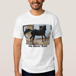 Diadhems Dream, Just Havin' Fun!! Shirt