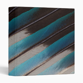Diagonal Blue-Bellied Roller Feather Design 3 Ring Binder