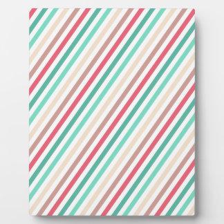 Diagonal Chic Multicolored Stripes Photo Plaques