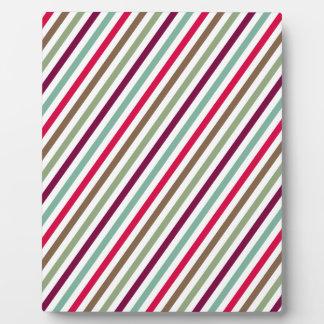Diagonal Chic Multicolored Stripes Plaques