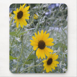 Diagonal Stack Sunflowers Mouse Pad