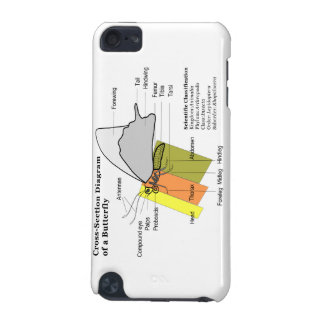 Diagram of a Common Butterfly Anatomy Lepidoptera iPod Touch (5th Generation) Covers
