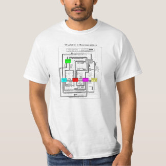 Diagram of a Functional Macroeconomics System T-shirt
